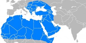 balkanlar-afrika-orta-asya-ortadogu-istanbuldan-yonetilmek-istiyor-h1464816710-9327bd